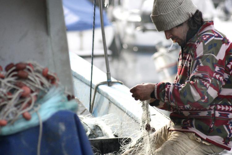 Fiskefartøjs reder var ansvarlig, fordi vagthavende faldt i søvn