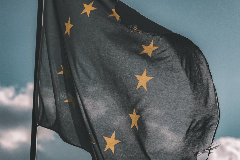 Fri bevægelighed i EU-retten - muligheder og faldgruber